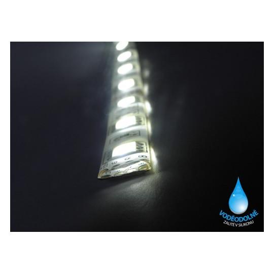 LED páska SMD5050, studená bílá, 12V, 1m, IP54, 60 LED/m