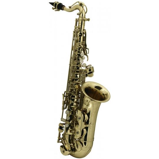 Es-Alt saxofon pro děti Roy Benson AS-201 AS-201