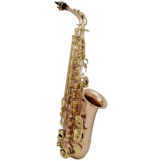 Eb-Alt Saxofon Roy Benson AS-202G AS-202G