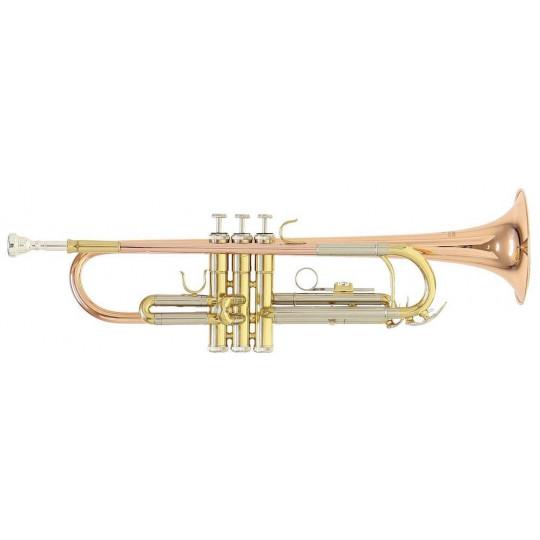 Bb-trumpeta Roy Benson TR-202G TR-202G