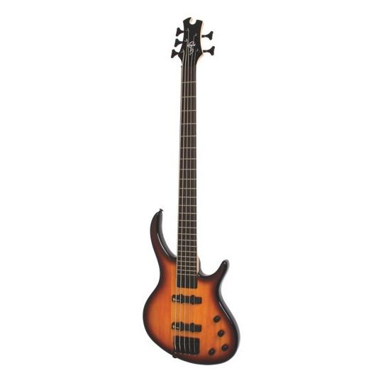 Epiphone Toby Deluxe-V Bass (gloss) VINTAGE SUNBURST