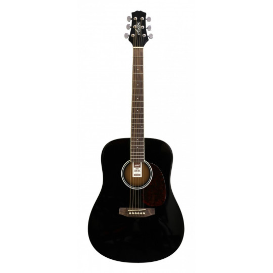 Ashton  D20 BK  - kytara dreadnought