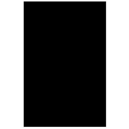 Partsland Úderová deska Plastová deska Černá, 3-vrstvá