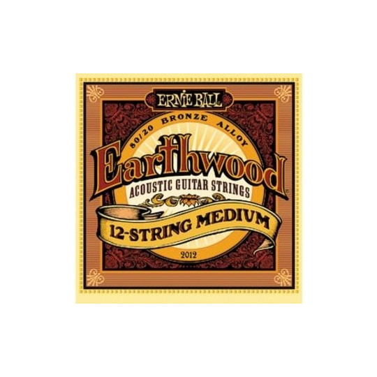 Ernie Ball 2012 EARTHWOOD 12-STRING MEDIUM