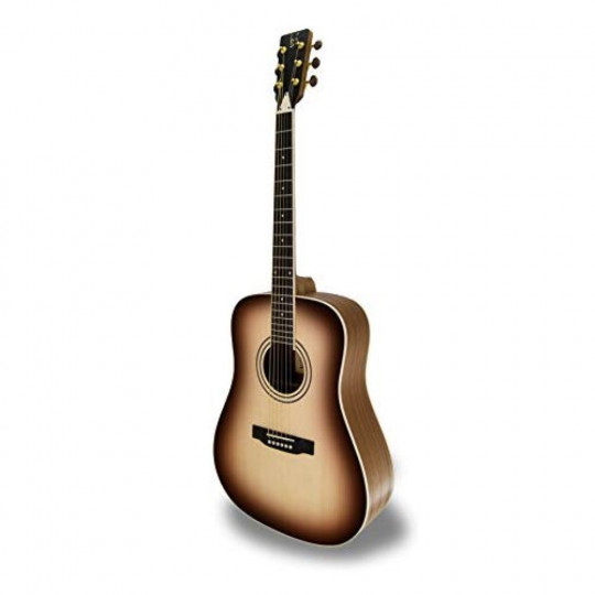 APC WG100 SB Acoustic Guitar