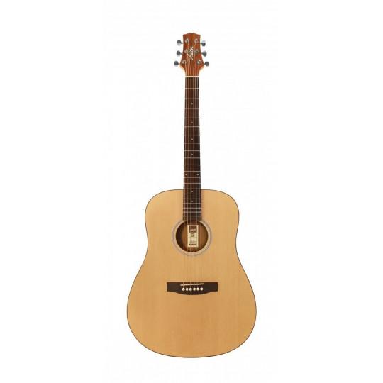 Akustická kytara Ashton D 20 NTM